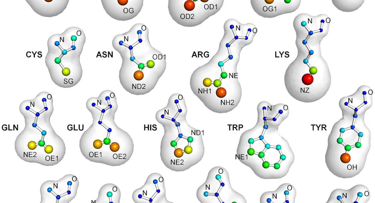 Examining Ligand and Protein Interactions