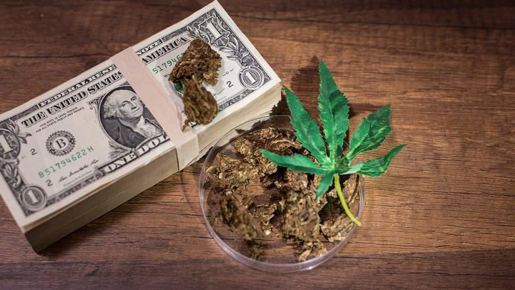 Spending All Your Money On Weed